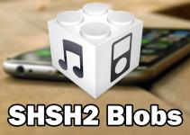 save shsh2 blobs